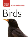 Birds (eBook): The Quick and Easy Spotter's Guide