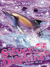 Stormy Skies (eBook): Silver Dolphins Series, Book 8