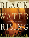 Black Water Rising (MP3): A Novel