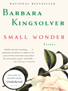 Small Wonder (eBook)