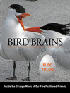 Bird Brains (eBook): Inside the Strange Minds of Our Fine Feathered Friends