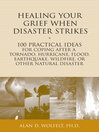 Healing Your Grief When Disaster Strikes (eBook): 100 Practical Ideas for Coping After a Tornado, Hurricane, Flood, Earthquake, Wildfire, or Other Natural Disaster