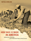 How Race Is Made in America (eBook): Immigration, Citizenship, and the Historical Power of Racial Scripts