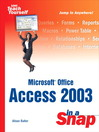 Microsoft Office Access 2003 in a Snap (eBook)