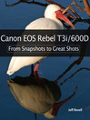 Canon EOS Rebel T3i / 600D (eBook): A View from the 21st Century