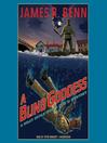 A Blind Goddess (MP3): Billy Boyle World War II Mystery Series, Book 8