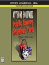 Public Enemy Number Two (MP3): Diamond Brothers Story Series, Book 2
