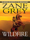 Wildfire (eBook)