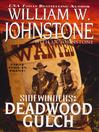 Deadwood Gulch (eBook): Sidewinders Series, Book 5