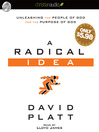 A Radical Idea (MP3): Unleashing the People of God for the Purpose of God