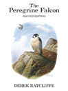 The Peregrine Falcon (eBook)
