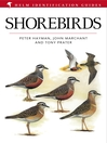 Shorebirds (eBook)