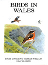 Birds in Wales (eBook)