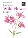 Concise Wild Flower Guide (eBook)