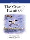 The Greater Flamingo (eBook)