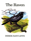 The Raven (eBook)