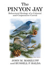 The Pinyon Jay (eBook): Behavioral Ecology of a Colonial and Cooperative Corvid