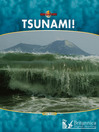 Tsunami! (eBook)