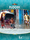 Flood! (eBook)