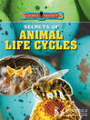 Secrets of Animal Life Cycles (eBook)