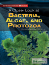 A Closer Look at Bacteria, Algae, and Protozoa (eBook)