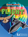 Secrets of Flight (eBook)