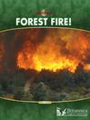 Forest Fire! (eBook)
