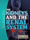 The Kidneys and the Renal System (eBook)