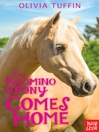 The Palomino Pony Comes Home (eBook): The Palomino Pony Series, Book 1