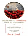 Depletion and Abundance (eBook): Life on the New Home Front