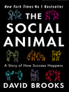 The Social Animal (eBook)