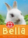 Bella the Runaway Rabbit