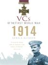1914 (eBook)