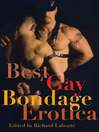 Best Gay Bondage Erotica (eBook)