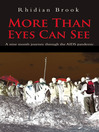 More Than Eyes Can See (eBook): A Nine Month Journey Through the Aids Pandemic