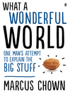 What a Wonderful World (eBook): One Man's Attempt to Explain the Big Stuff