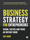 Business Strategy for Entrepreneurs (eBook): Vision, Tactics and Focus: An Instant Guide