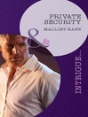 Private Security (eBook): Delancey Dynasty, Book 3
