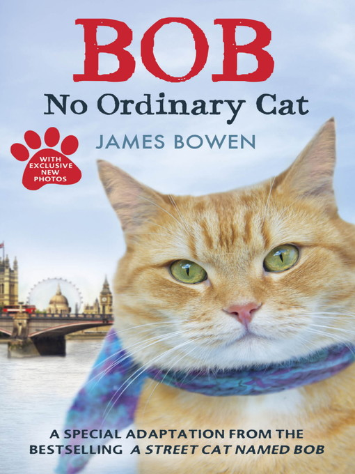 Bob (eBook): No Ordinary Cat