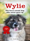 Wylie (eBook): The Brave Street Dog Who Never Gave Up