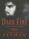 Dark Fire (eBook): Dark Series, Book 6