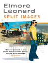 Split Images (eBook)