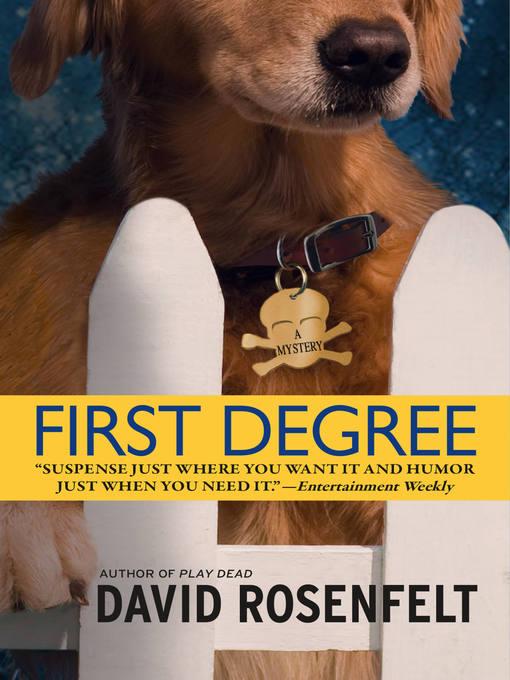 First Degree (eBook): Andy Carpenter Series, Book 2