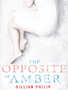 The Opposite of Amber (eBook)