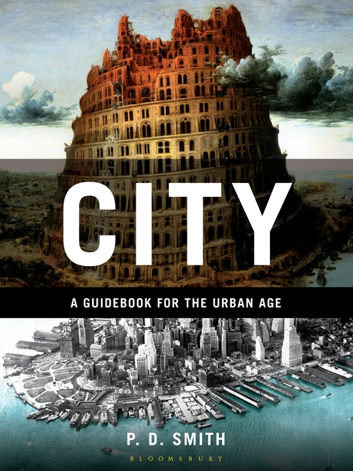 City (eBook): A Guidebook for the Urban Age