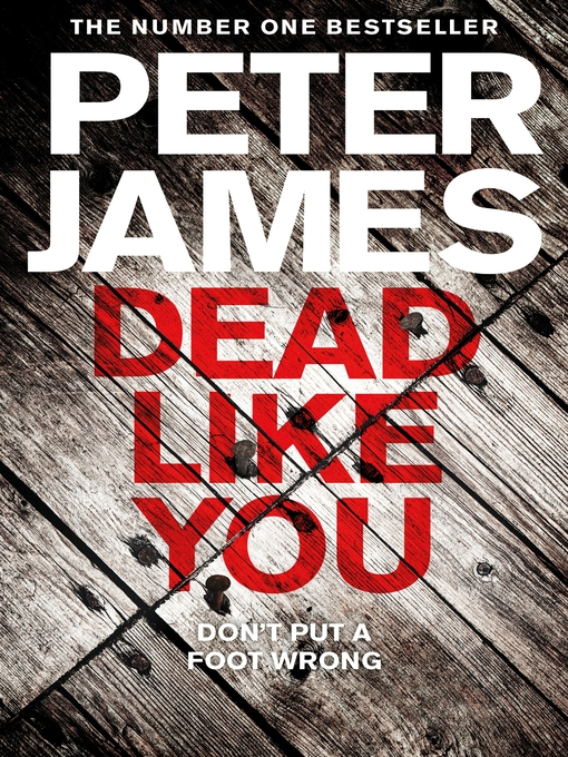 Dead Like You (eBook): Detective Superintendent Roy Grace Series, Book 6