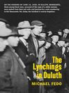 The Lynchings in Duluth (eBook)