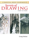 Secrets of Drawing (eBook): Start to Finish