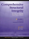 Comprehensive Structural Integrity (eBook)
