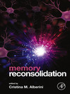 Memory Reconsolidation (eBook)
